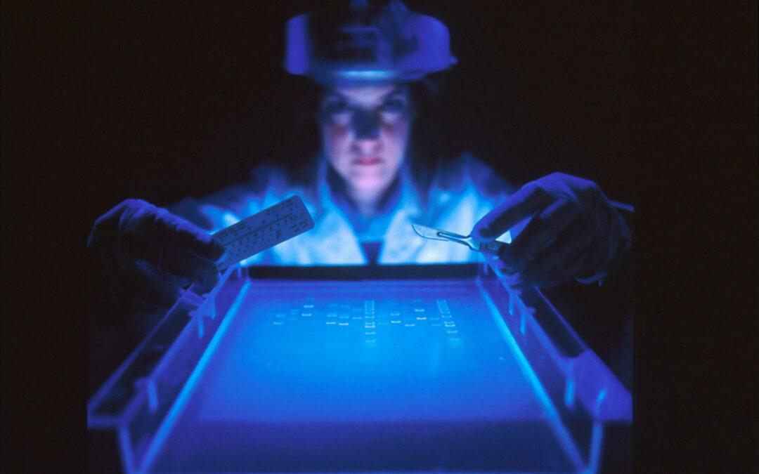 Avis du COMETS : « Science, risques et principe de précaution »